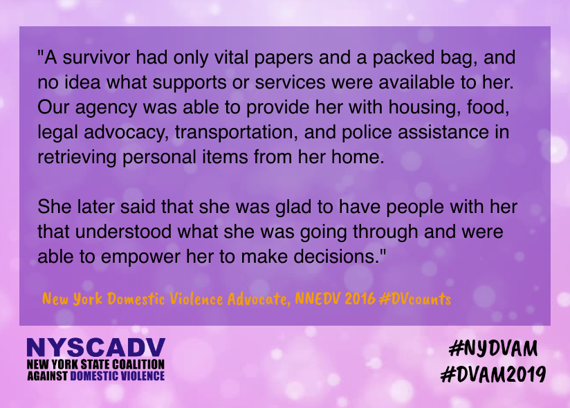 DVAM Needs of Survivors