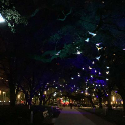 Discovery Green event