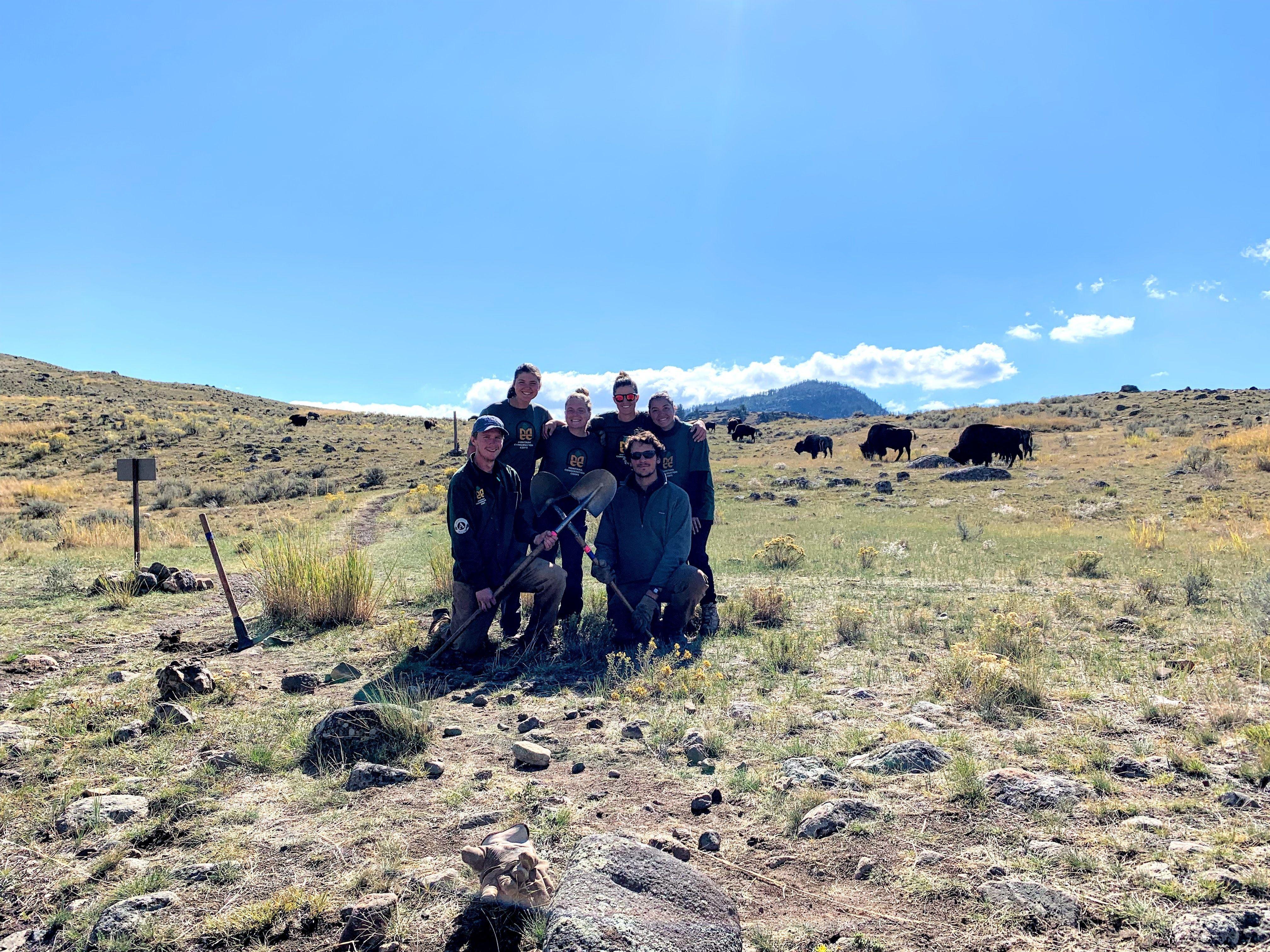 Shoshone National Forest Fall Trail Restoration