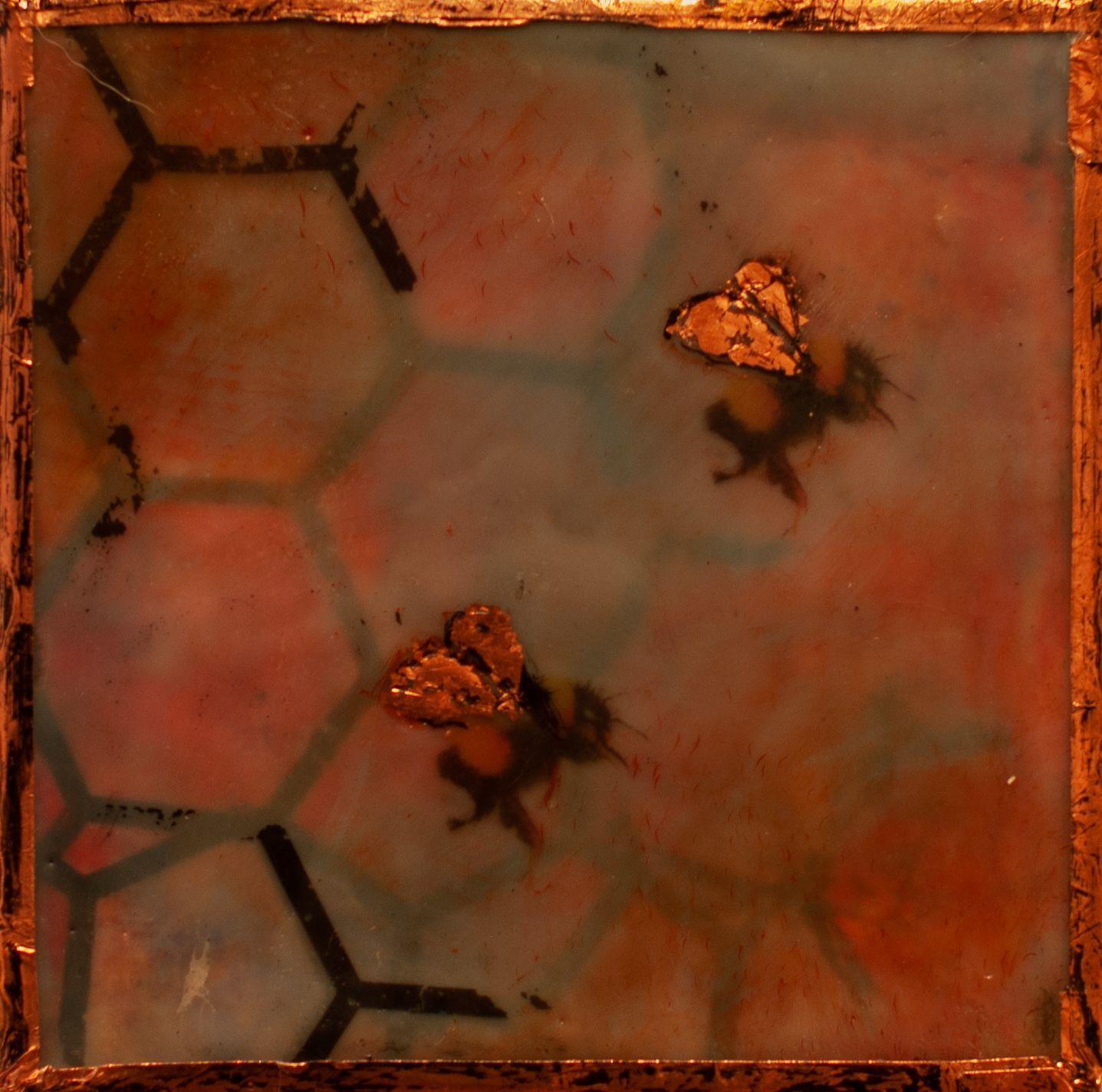 """Laurel Shepard Kvale - """"Sweet Bee"""""""