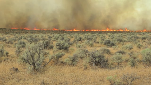 Harney County Wildfire Collaborative Meeting