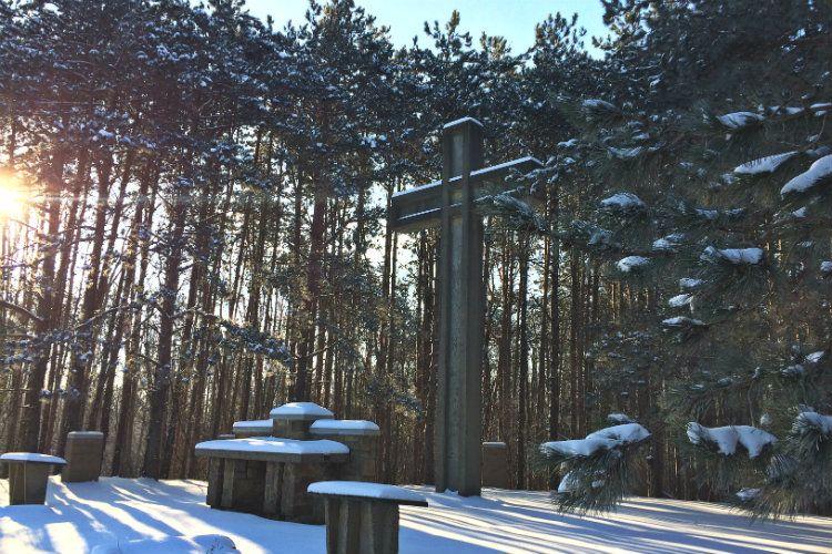 Winter Gallery 8