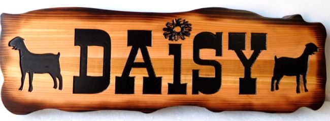 "O24434 - Rustic (Scorched) Cedar Wood Sign for Goat Farm , ""Daisy"""