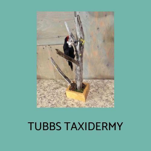 Tubbs Taxidermy