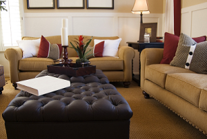 Upholstery Cleaning: