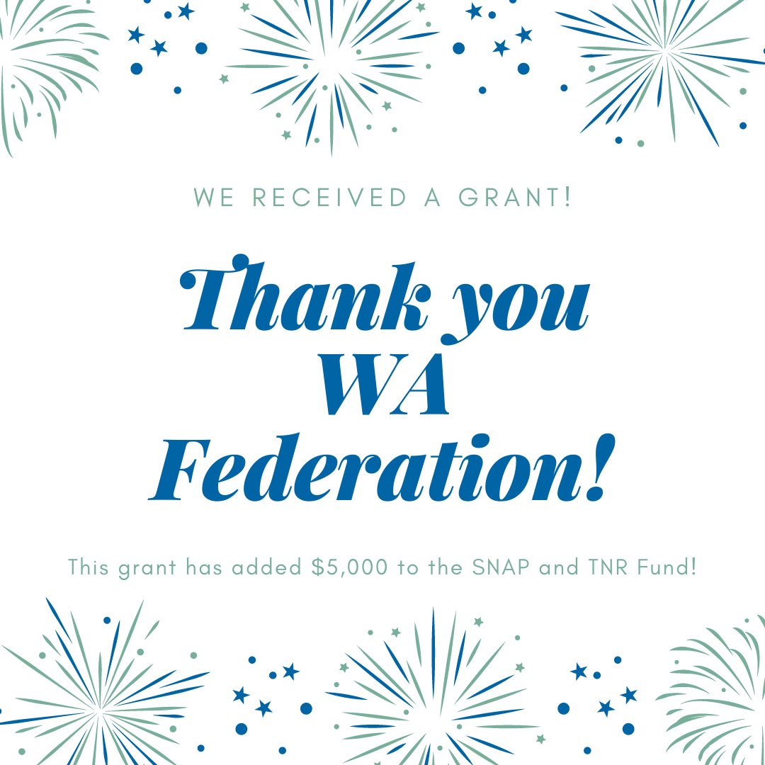 We Received a Grant!