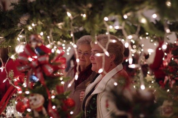 Christmas By The Lake Event Clear Lake, Iowa, 2020 Festival of Trees | Clear Lake, Iowa | One Vision