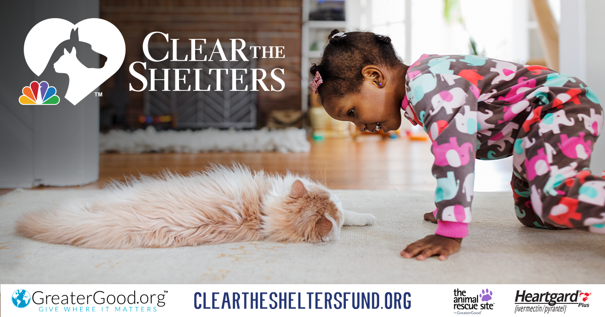RBARI Joins Clear the Shelters!