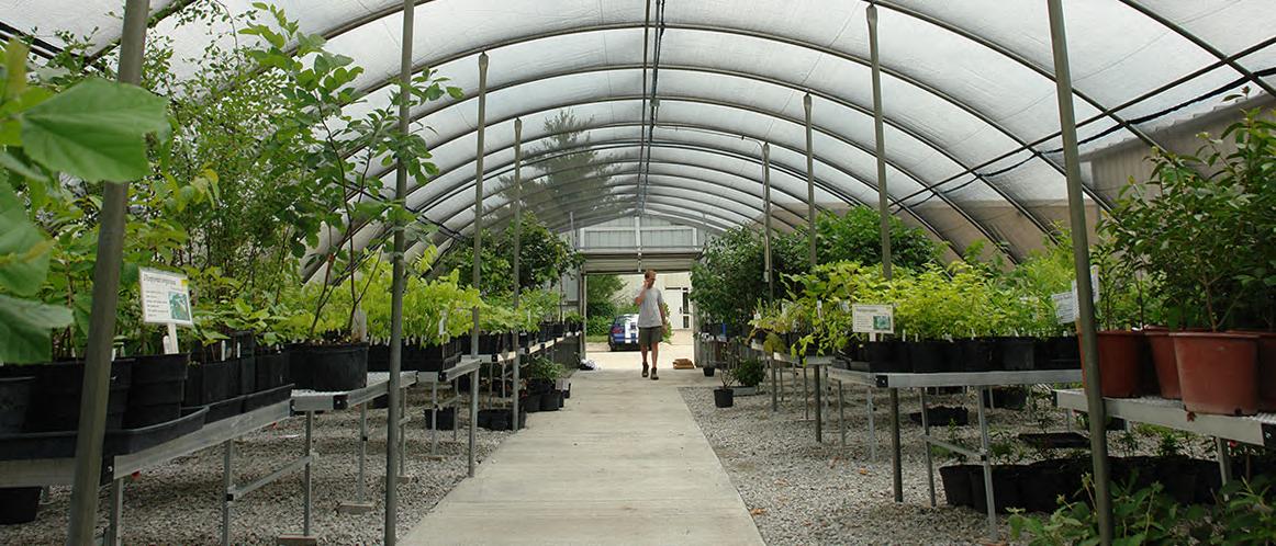 Greenhouse Sales May 21-June 25