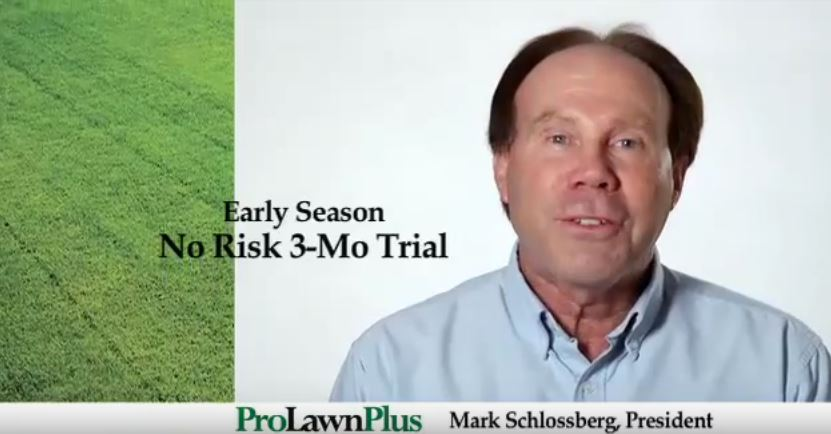 ProLawnPlus: Video Work