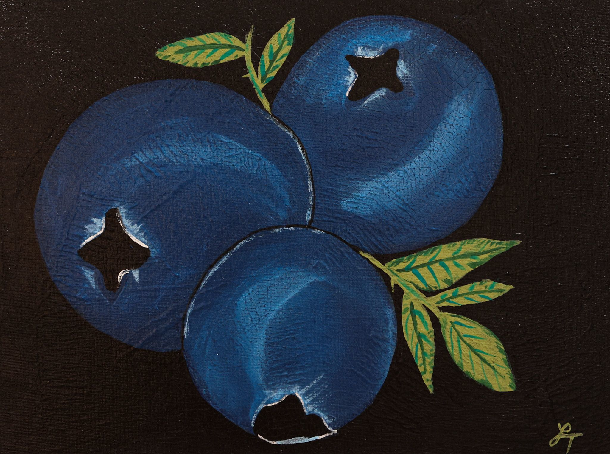 """Blueberries"" - Lesly Trelfa"