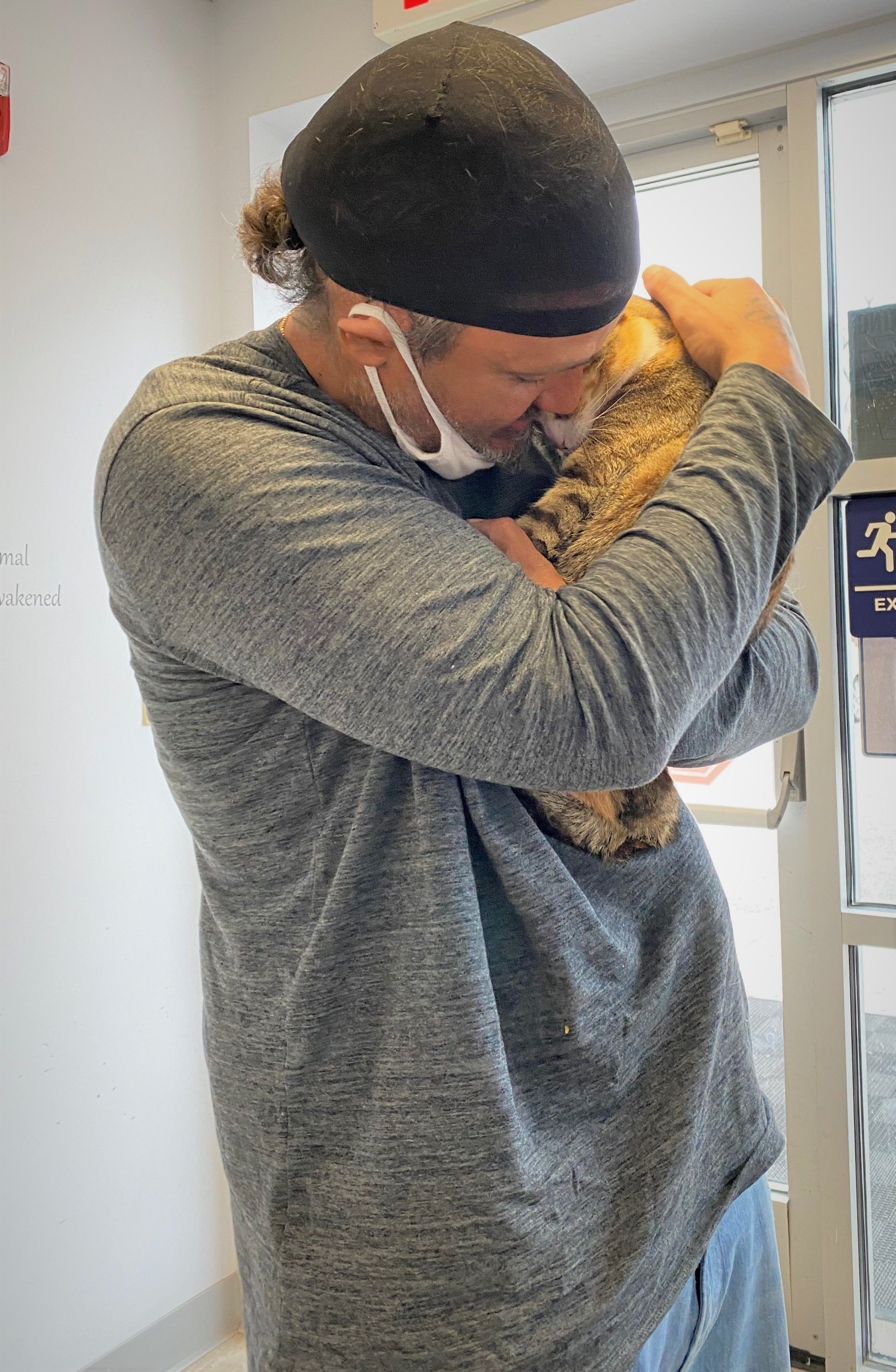 The Man Who Drove 900 Miles Overnight to See His Cat Again