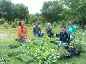 29. Cultivate KC's Food Forest