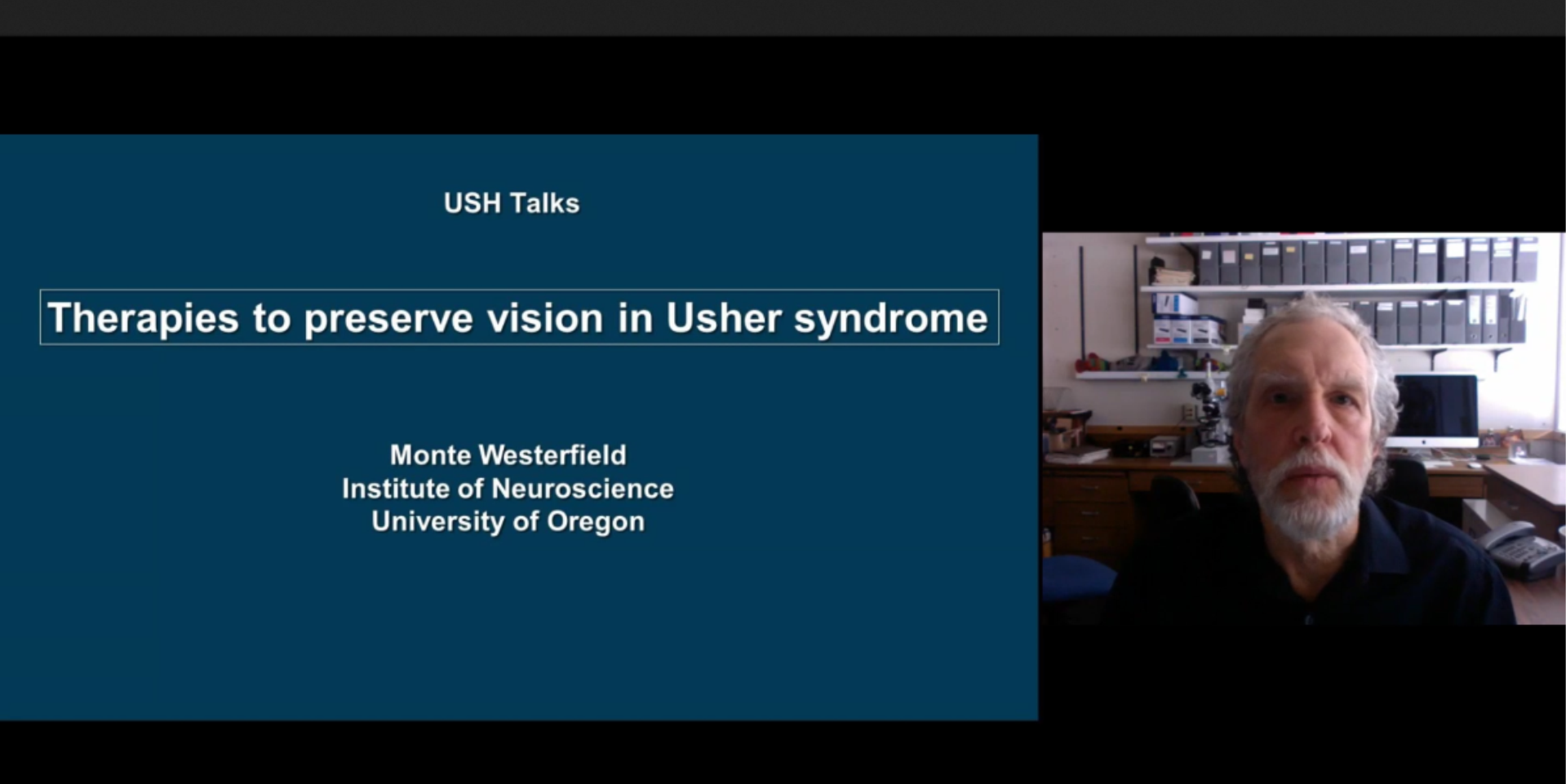 Therapies to Prevent Vision Loss in Usher Syndrome