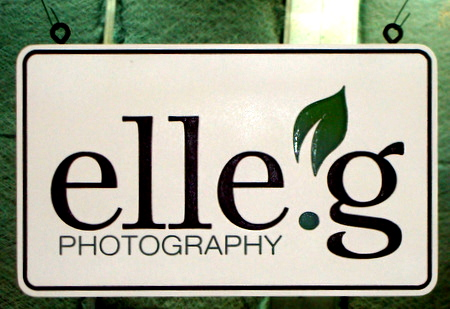 SA28316 - Carved Wood Photography Studio Sign