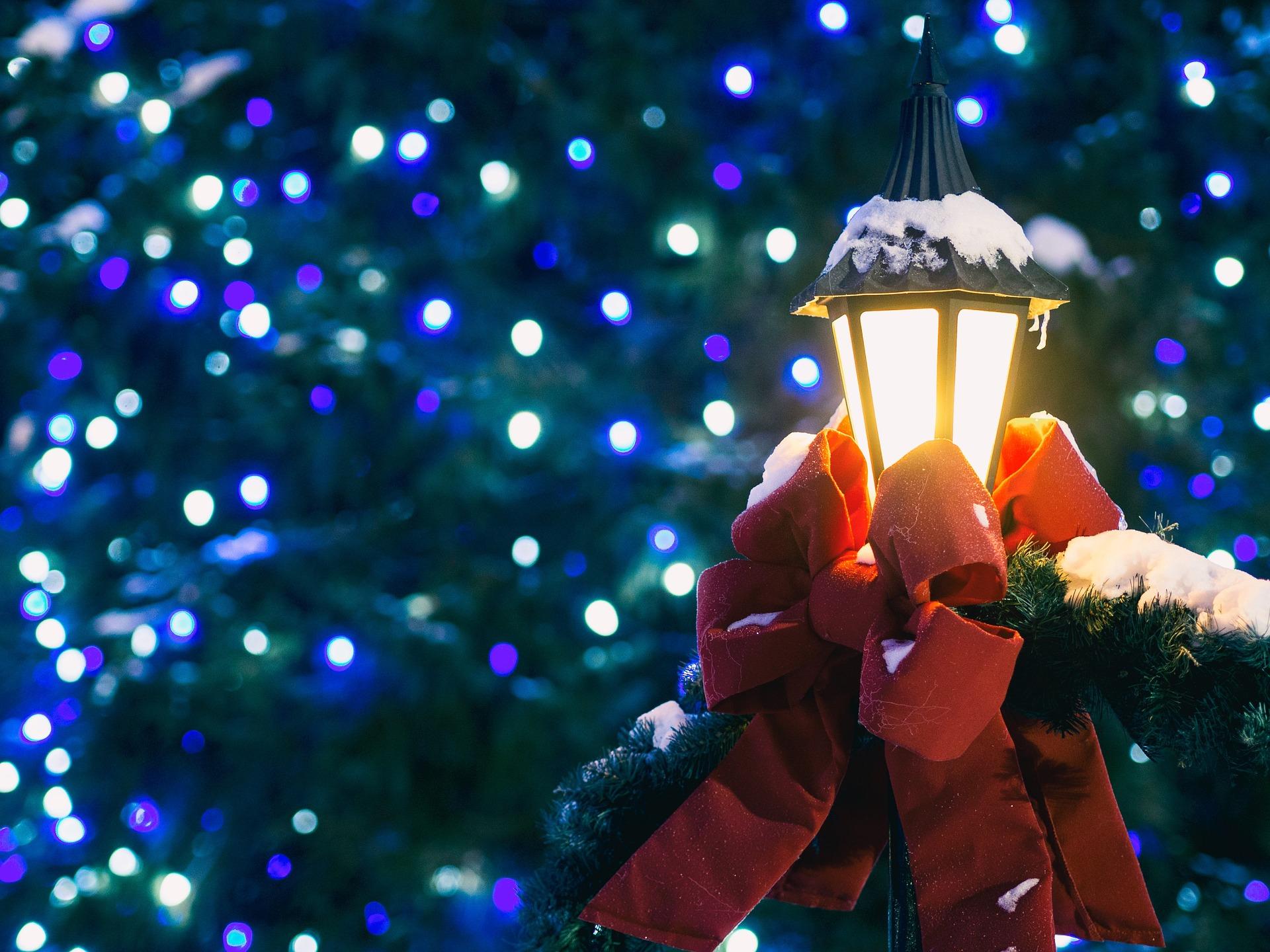 whats on - Christmas Light Show Raleigh Nc
