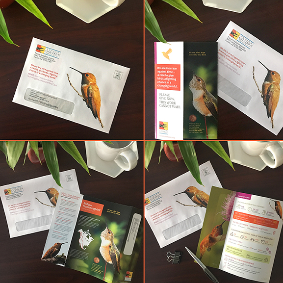 Direct Mail Appeal Design & Production