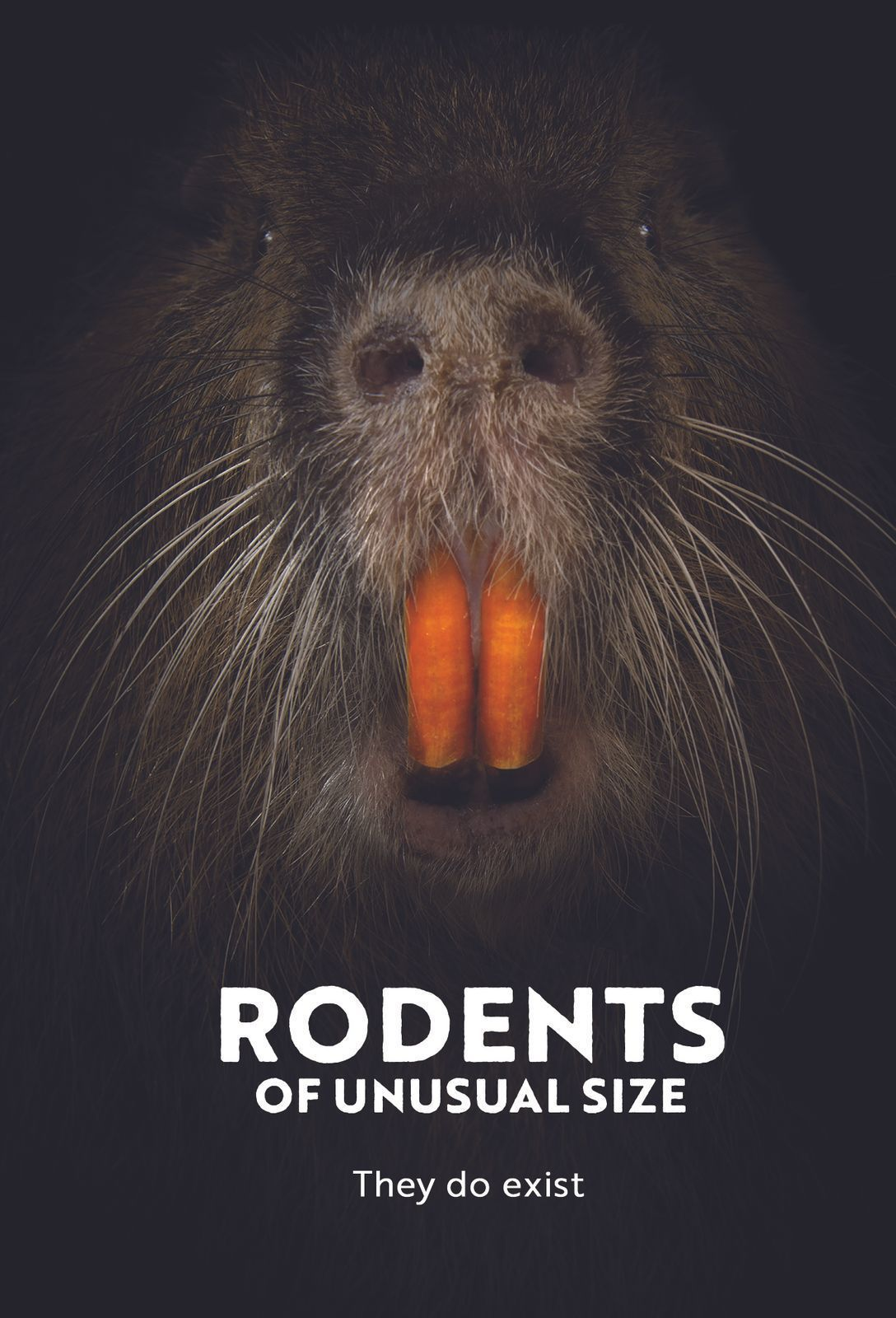 SUMMER FILM SERIES: Rodents of Unusual Size
