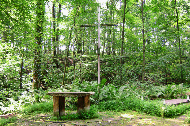 Zipline Through a Sanctuary?