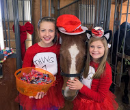 """NOT SO SPOOKY"" Stable Shindig"
