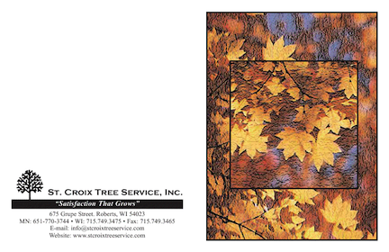 St. Croix Tree Service Fall