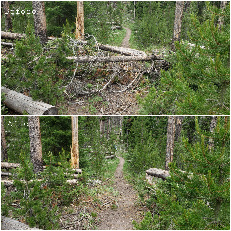 Blackrock Ranger District Log Out