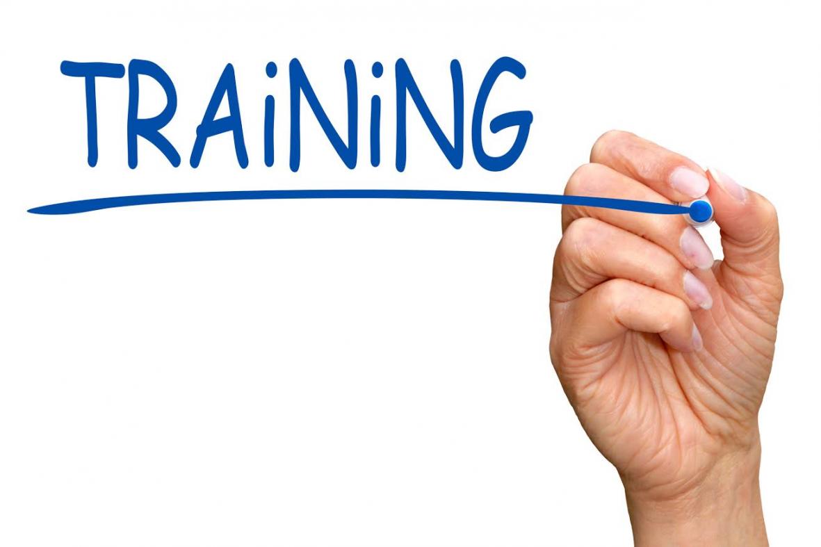 Online Training: Steward of Children