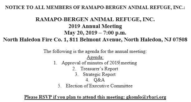 Annual Meeting (2019)