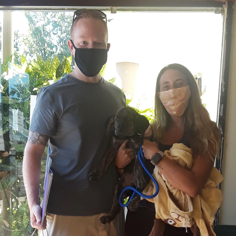 A Pandemic Pup
