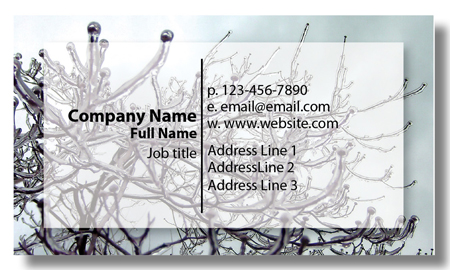 Model #014: Kwik Kopy Design and Print Centre Halifax Business Cards