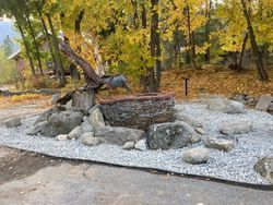 Bird Nest Rock Garden