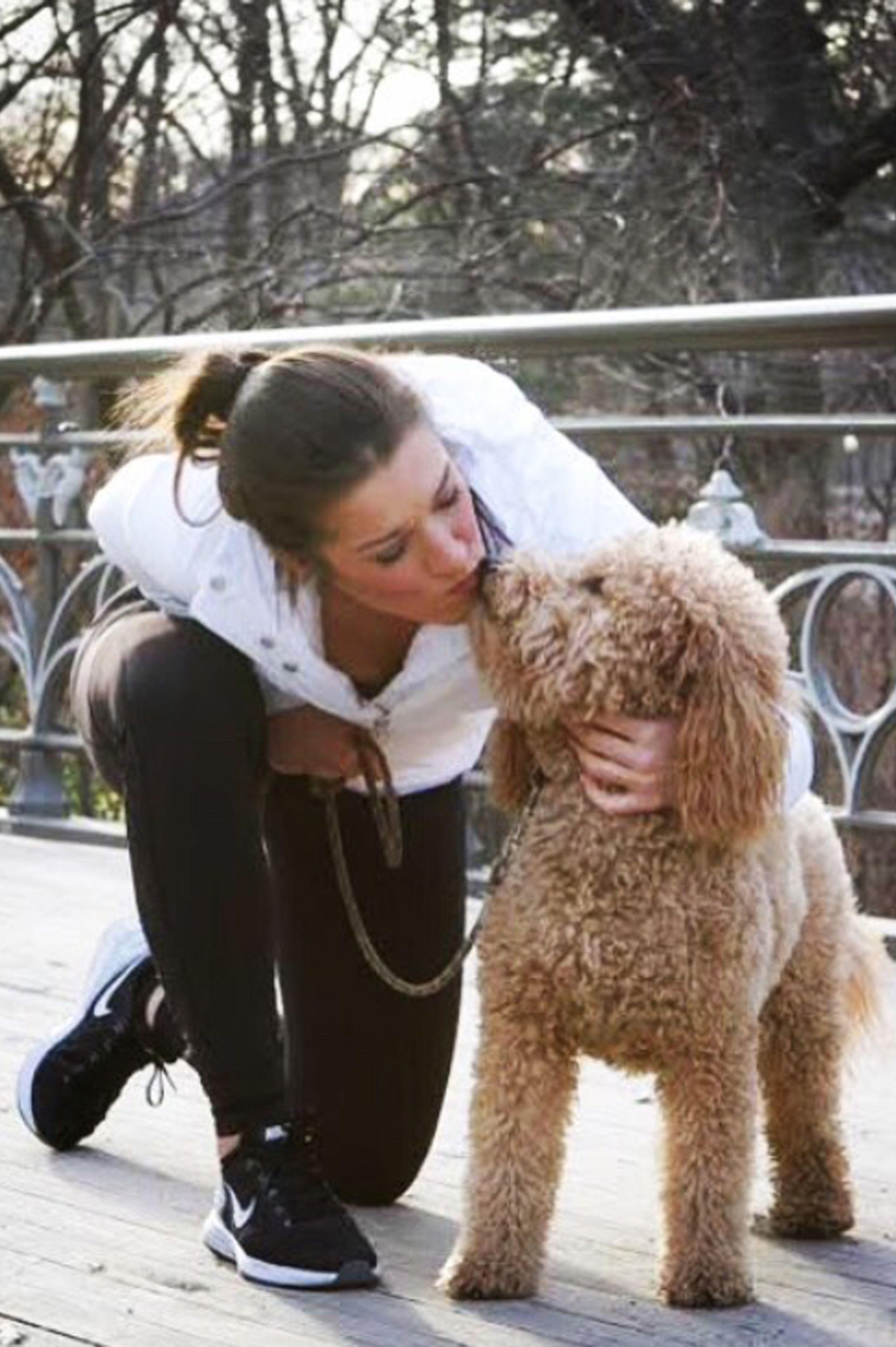 Dog Lover & Owner