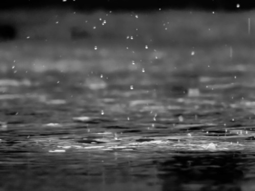 Black and white image of rain drops landing in a puddle