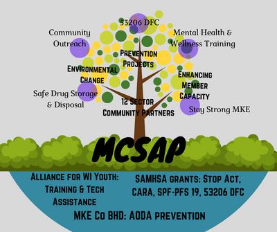 mcsap structure graphic