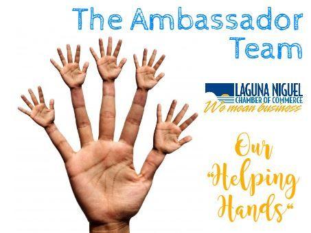 Ambassador Team Meeting - Via Zoom