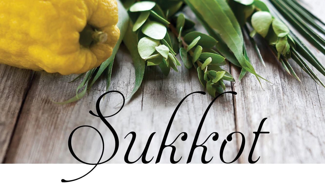 Happy Sukkot!