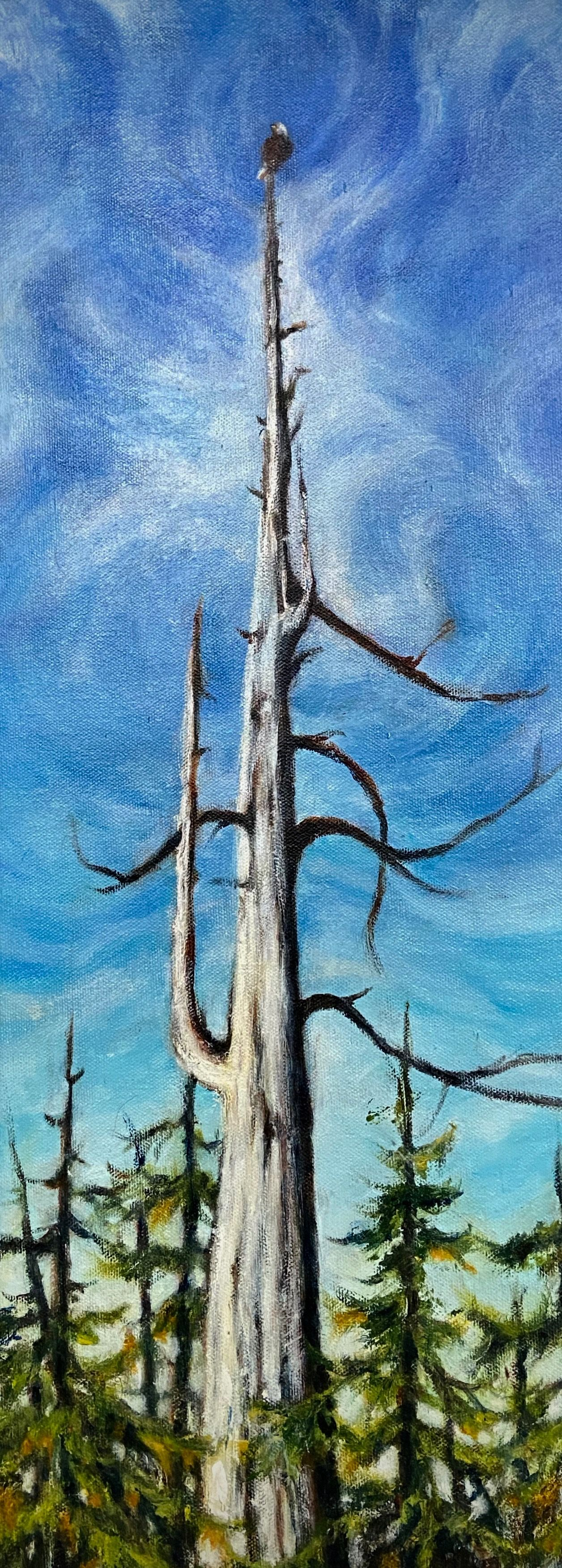 "Marilyn Lee - ""Lookout, Yellow Cedar Snag"""