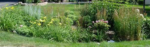 rain gardens on easy rain painting, easy vertical garden, easy knot garden, easy flower garden, easy vegetable garden, easy bat house, easy landscape,