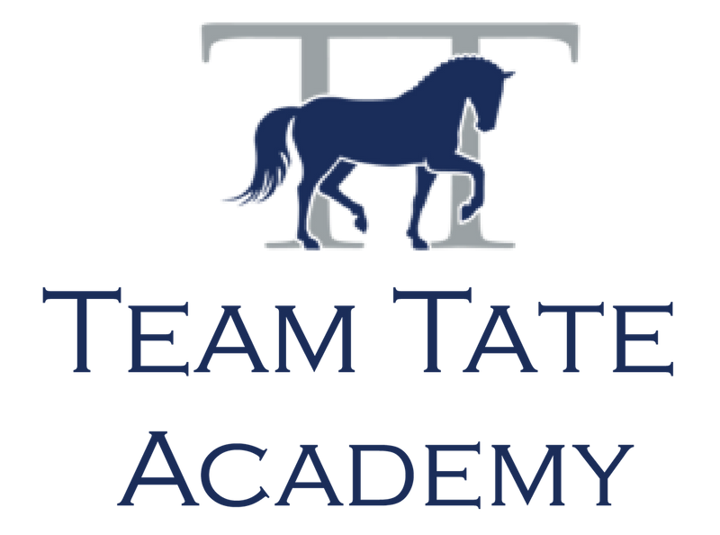Team Tate Academy Welcomed as a TDF Corporate Sustaining Partner
