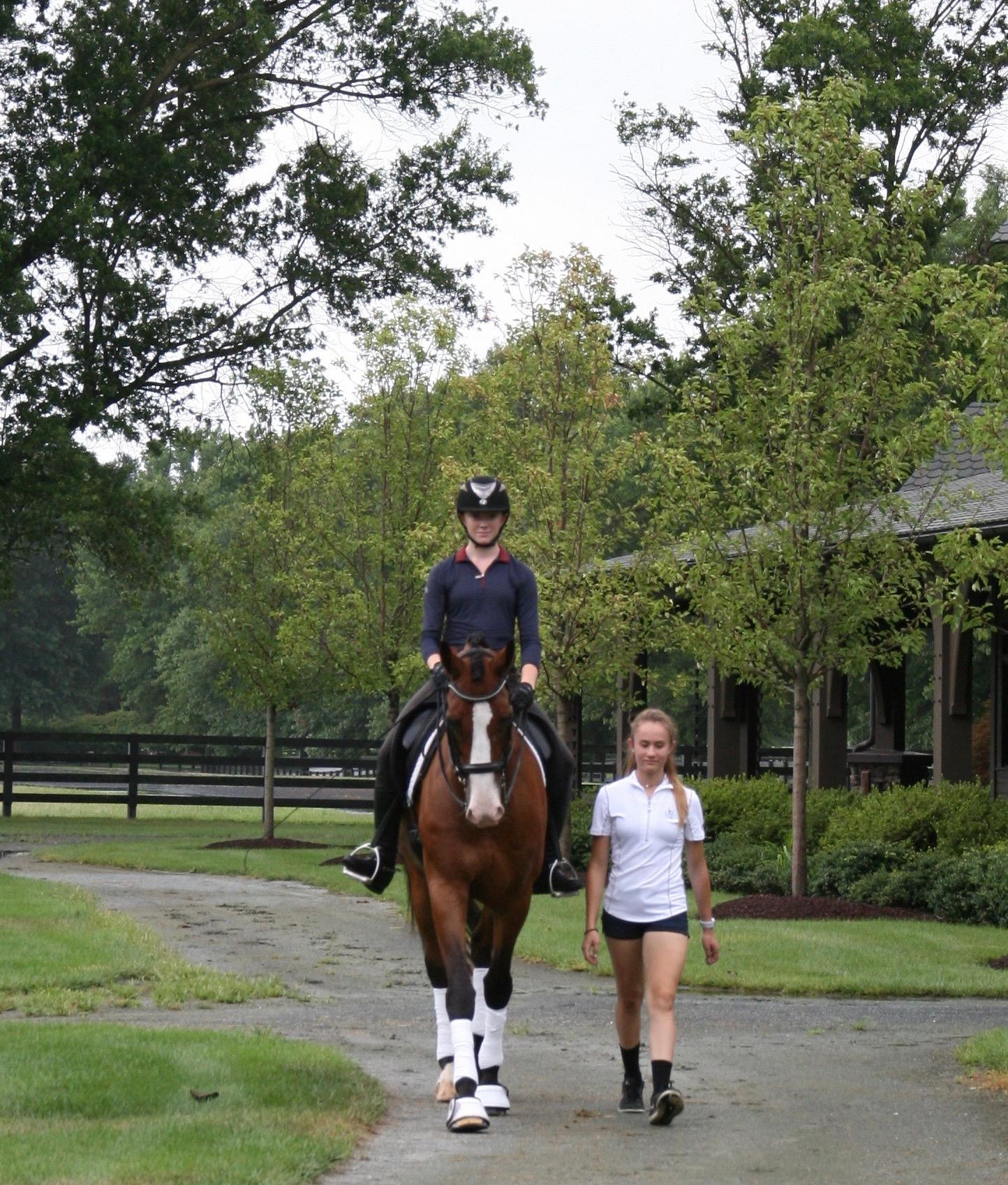 D4K Sponsors Scott Hassler Horsemastership Clinic