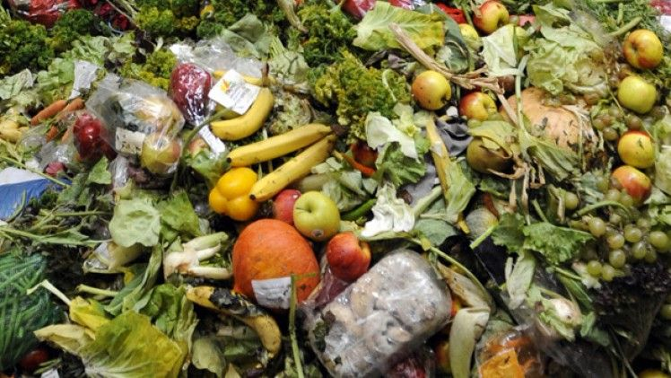 First food waste recycling - commercial and residential