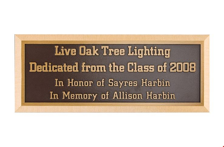 M7534 - Precision Machined Bronze Tree Dedication Plaque.