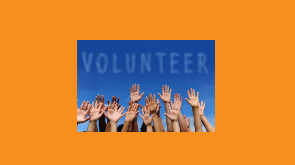 Volunteer Now - Give back while having fun