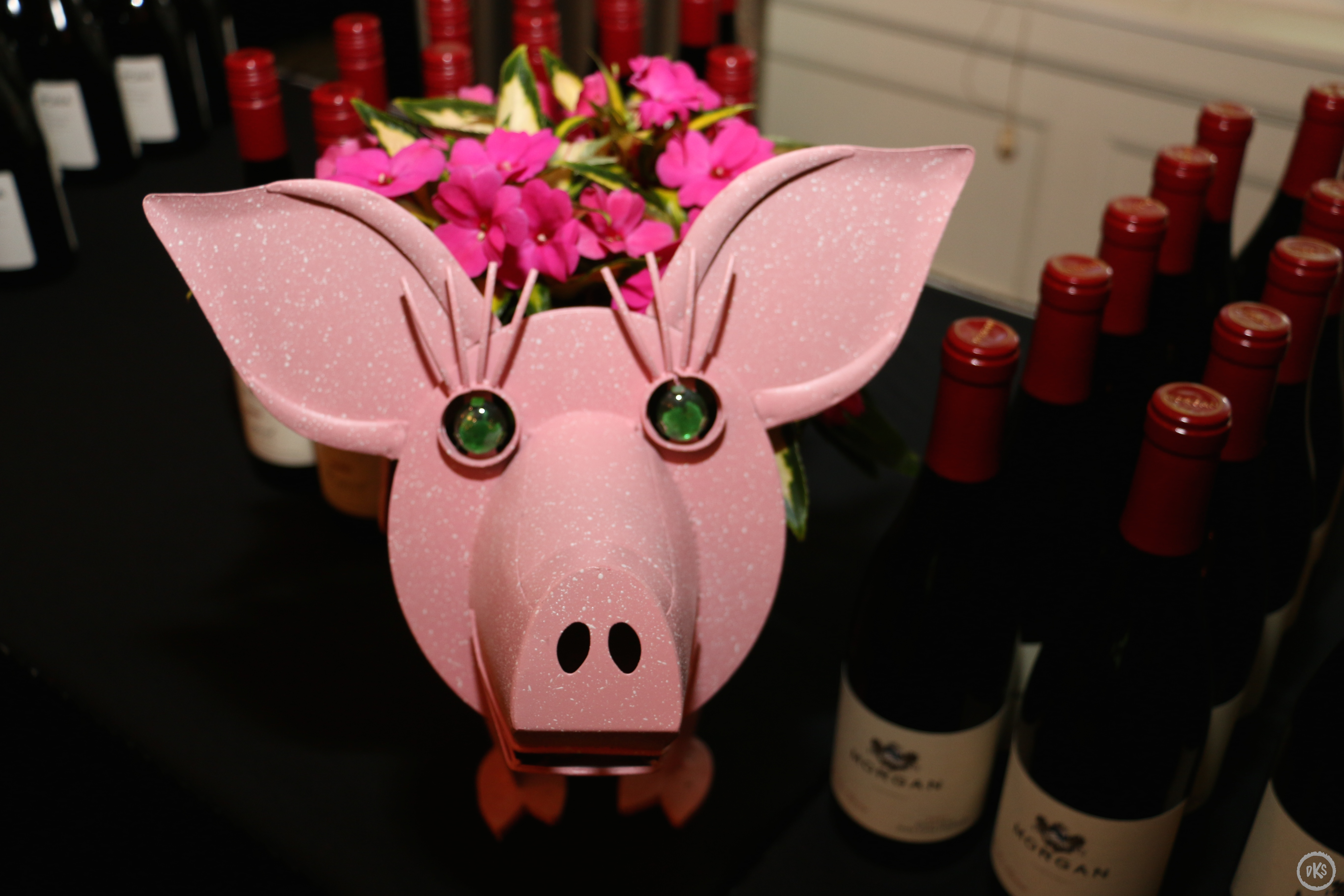 Pinot, Pigs & Poets Attendees