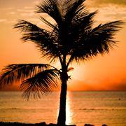 Florida Keys 1 - 2021