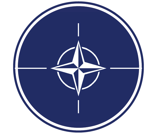 EP-1180  - Carved Plaque of the Emblem on the Flag of  the North Atlantic Treaty Organization (NATO), Artist Painted