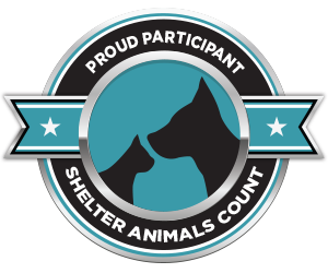 Shelter Animals Count Logo