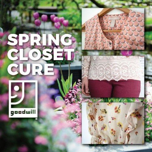 Spring Closet Cure