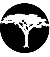 Acacia Global