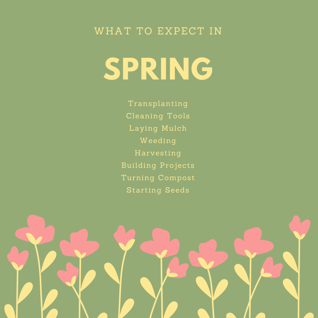 What to Expect in Spring